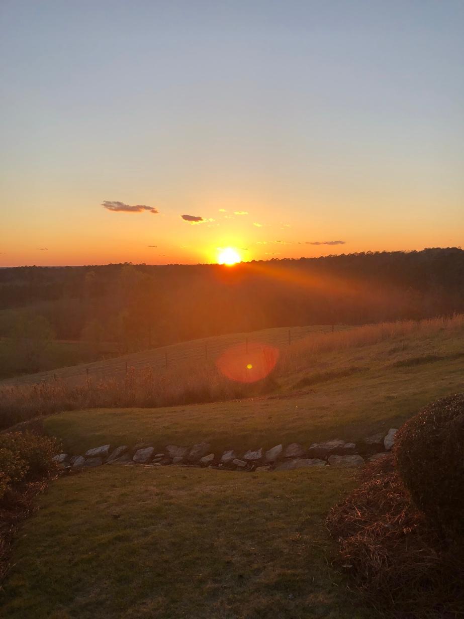 SpringHouse Sunsets